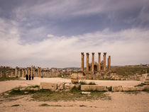 Temple of Artemis by Martin Beerens