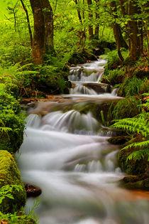 Wasserfall2-herzog