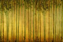 Bamboo-rising