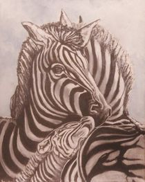 Zebra Family by Anne Buffington