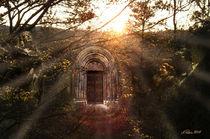 Das magische Portal von Alois Reiss