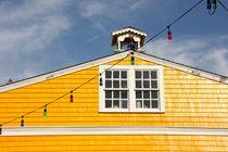 Cape-cod-dot-dot-dot-yellow