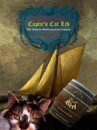 Captncatsposter10