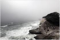 California Coast von Dirk Noelle