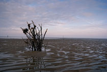 Wattenmeer by maldesowhat