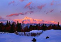 View of the mountains von Tomas Gregor