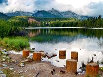Strbske Pleso Lake by Tomas Gregor