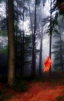 'überleben...' by hedy beith