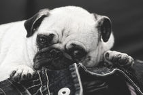Relaxation by Martina Raab