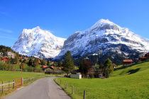 Grindelwald by Gerhard Albicker