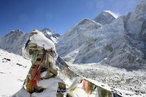 Mount Everest by Gerhard Albicker