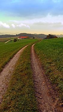 Waldburgtrail