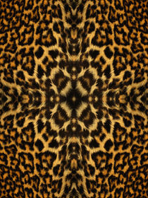 Animal-fur-pattern-4