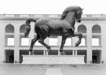 Leo's Horse von Valentino Visentini