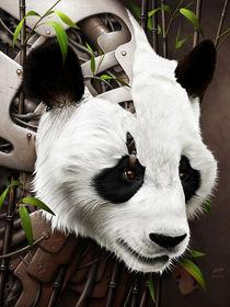 Wild 2 - The Panda von Benjamin FRIESS