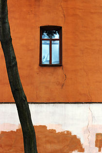 One blue window in the red-brown wall by helenlir