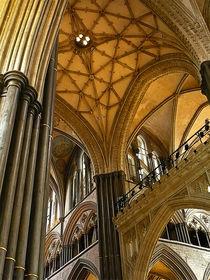 Salisbury Cathedral von dip