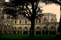Salisbury Cathedral Cloisters von dip
