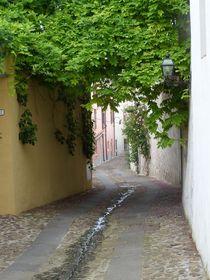 street von Corinna Schumann