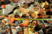 Natural puzzle von Martine Affre Eisenlohr