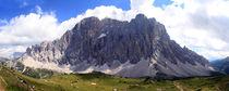 Img-3440-dot-panorama