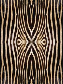 Animal-fur-pattern-16