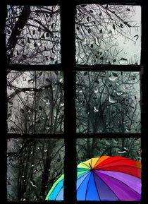 Das Regenfenster by Heidi Schmitt-Lermann