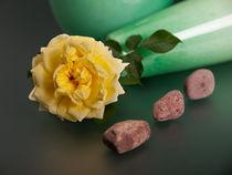 Gelbe Rose mit Steinen by Wolfgang Wittpahl