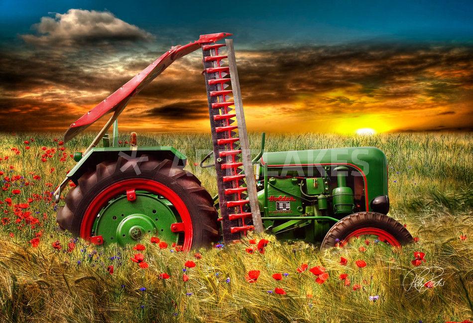 holder oldtimer trecker traktor fotografie als poster. Black Bedroom Furniture Sets. Home Design Ideas