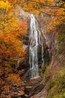 Autumn waterfall by Danislav Mironov