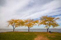 Fall Colors on Lake Erie by John Bailey