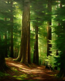 Sunshine in the Hemlock Forest by Susan Bull Riley