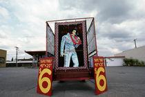 Elvis by Jim Corwin