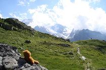 ein Blick auf die Alpen by Olga Sander