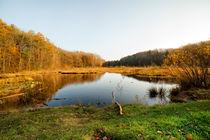 Pebermosen-lake