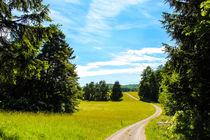 Wanderweg by mario-s