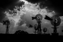 Windmills of Tolar  von Tom Campbell