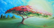 poinciana-tree  by Mark Malinowski