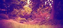 Japanese Garden von Pascal Betke