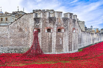 Poppies at The Tower Of London von Graham Prentice