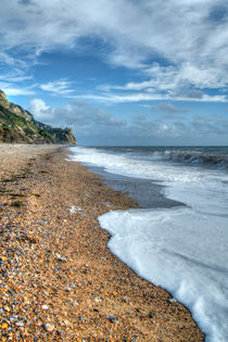 Branscombe Beach von David Tinsley
