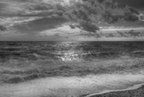 Sunlit Surf von David Tinsley