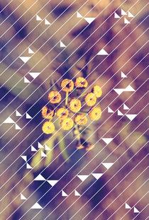 2014-11-07-holidaze-1
