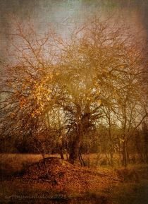 Golden November by mimulux
