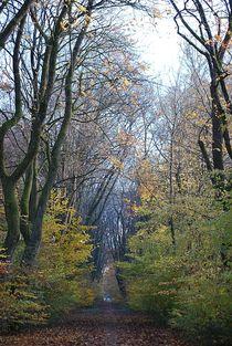 Herbst2014-26