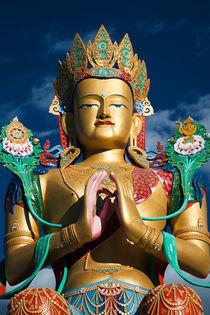 Maitreya Buddha, Nubrah Valley, Ladakh by studio-octavio