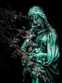 Engel und Dornen von andreasrumpf