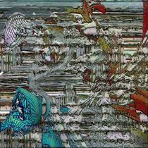 The shores of Trekkantrar by Helmut Licht