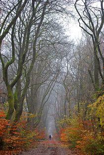 Herbst2014-100