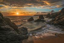 goldene Küste von Barbara Seiberl-Stark